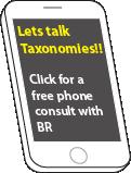 Phone Taxonomies CTA v01