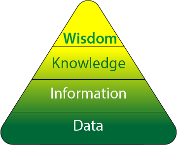 DIKW model - data information knowledge wisdom